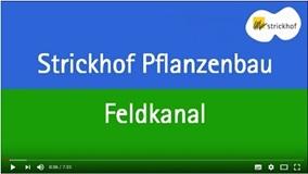 Strickhof Pflanzenbau Feldkanal